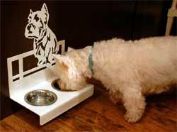 Come valutare il cibo per cani