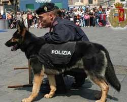 cane_poliziotto
