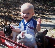 Cuccioli e neonati