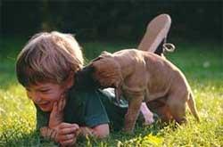 I cuccioli e i bambini