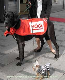 dogvertising