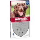 BayerAdvantix per cani large