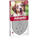ElancoAdvantix per cani medium