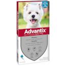 BayerAdvantix per cani small