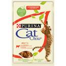 PurinaCat Chow Adult (manzo e melanzane)