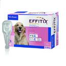 VirbacEffitix per cani di taglia grande