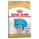 Royal CaninGolden Retriever Junior