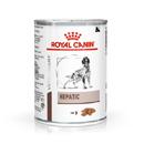 Royal CaninHepatic canine umido