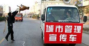 Guardie cinesi uccidono a bastonate un cane